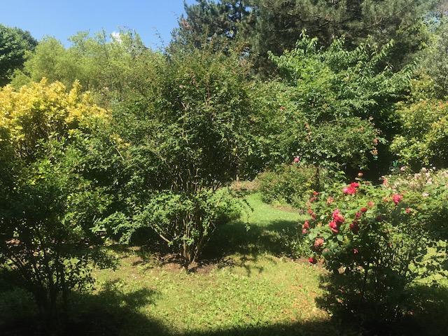 appartement4 piéce +jardin